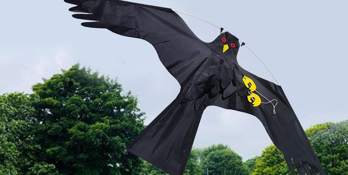 bird repellent kite Ιπτάμενος Απωθητικός Αετός κυπρο